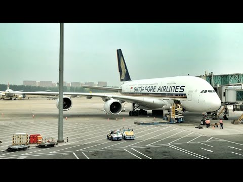 SINGAPORE AIRLINES ECONOMY CLASS REVIEW | SQ807 Beijing to Singapore