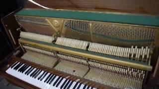 Byudjet pastki BARMOG'I pianino RONISCH, ZIMMERMANN GEYER ta'mirlash. Natija