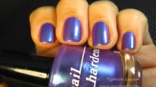 Brucci - Typhoon Lagoon Thumbnail