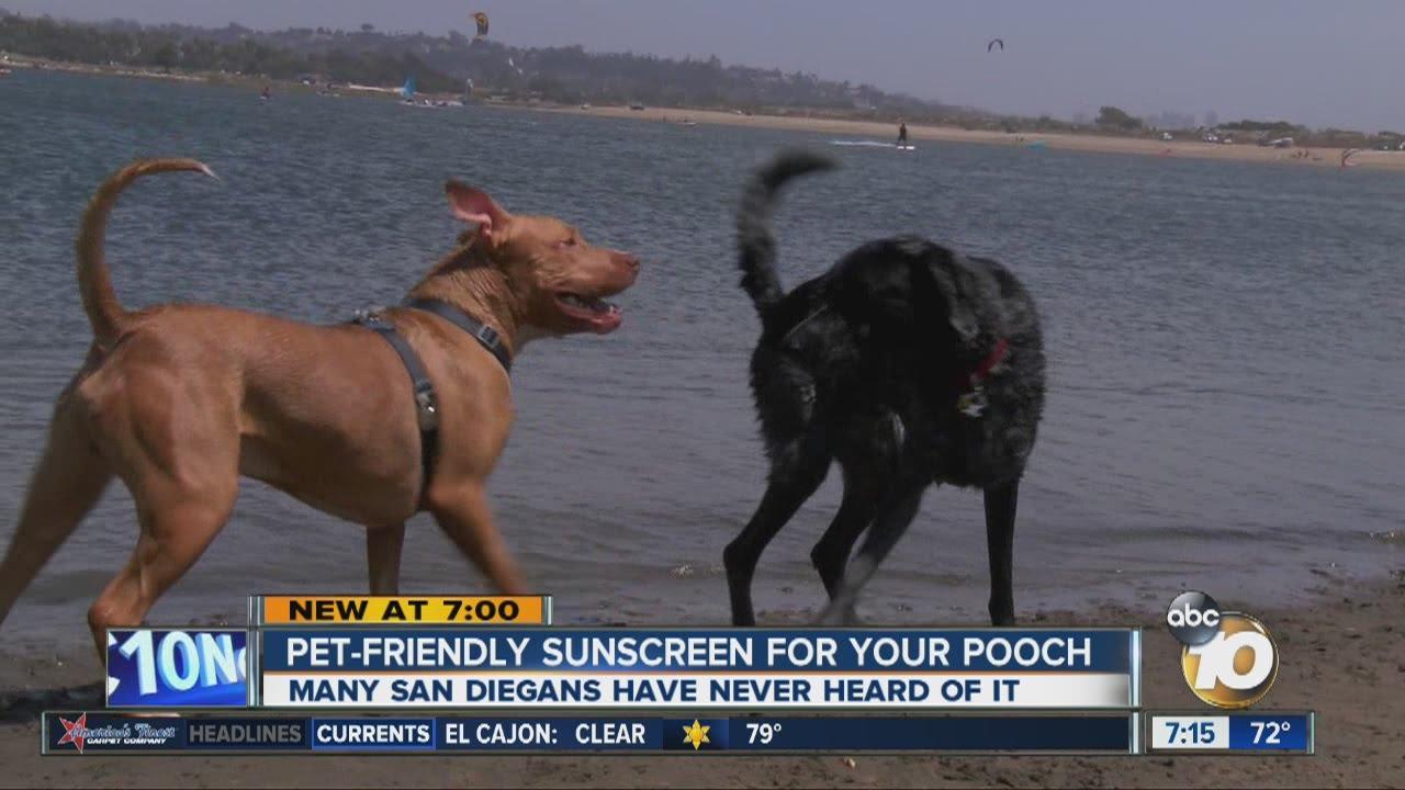 dog friendly sunscreen
