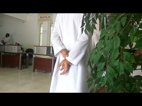 Adillah office, Medina-qurbanalibulbul-কুরবান আলী বুলবুল