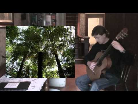 The Forest Awakens - New Zealand Suite for Guitar...