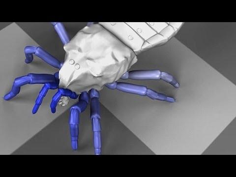 Prehistoric News : Ancient arachnid brought back to life