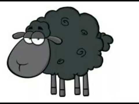 Cierna ovca