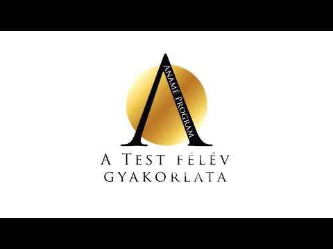 Test félév gyakorlata - Anamé Program