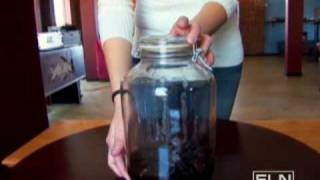 Blackberry Brandy Liqueur-Fine Living