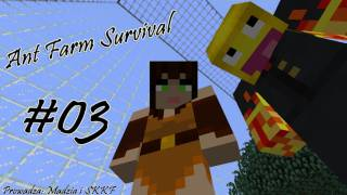 Ant Farm Survival #03