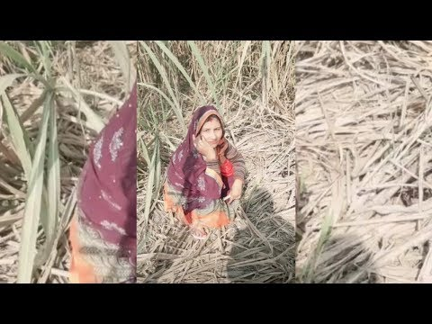 Indian Village Auntys Pooping Videos