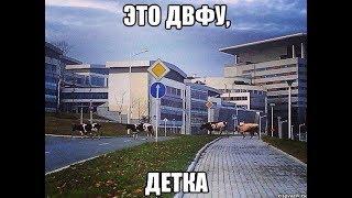 Владивосток - прогулка на о.Русский (ДВФУ)