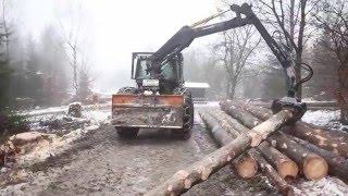 Starkholzernte Siegen Gebrüder Daub GbR