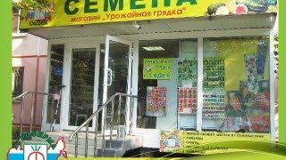 Где купить семена в Краснодаре?(Магазины Агрофирмы