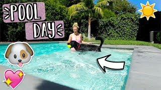 Our Dog Goes Swimming!! AlishaMarieVlogs