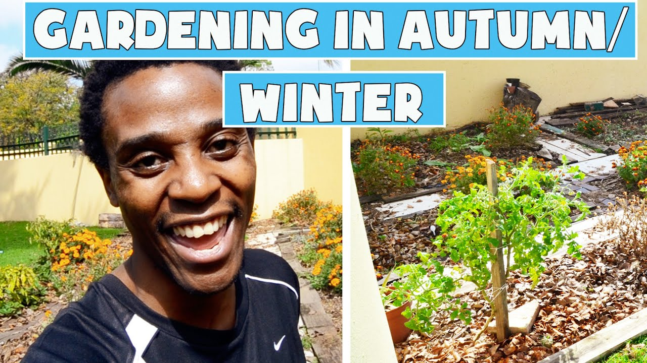 Direct Sowing Vegetable Seeds In An Autumn Garden Hacks For A