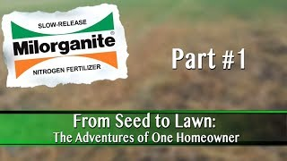 How to Start a Lawn From Seed: Part 1