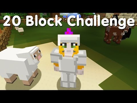 Minecraft PS4 - 20 Block Challenge - Thinking Food  (12)