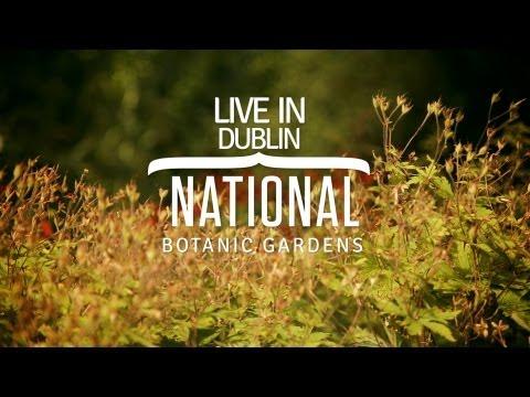 Seda Live in Dublin: National Botanic Gardens