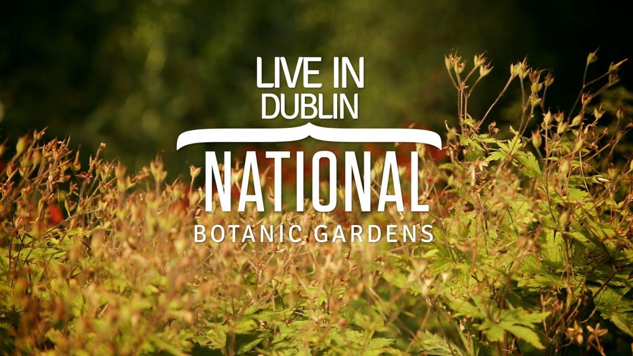 Seda Live in Dublin: National Botanic Gardens - YouTube