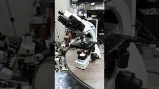 현미경사용법