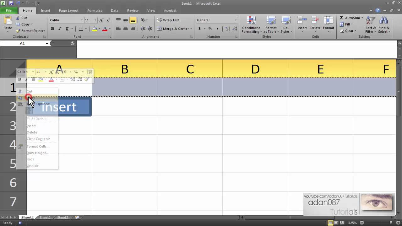 Excel macro that inserts data with a button
