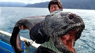 5 Shocking Fishing Moments Caught On Camera