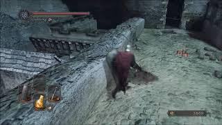 Zagrajmy w Dark Souls 2: Scholar of the First Sin (part 10)