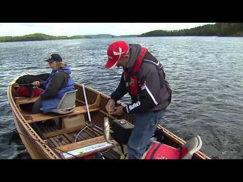 Wilderness walleye, Marmac Lodge, Esnagi Lake, Foleyet, ON