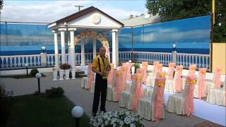 Музыкант Сергей Горбань. Музыка на свадьбу.