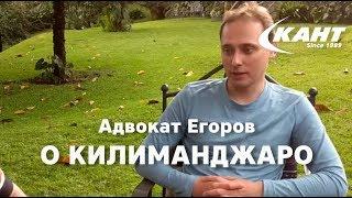 Восхождение на Килиманджаро: интервью с адвокатом Егоровым
