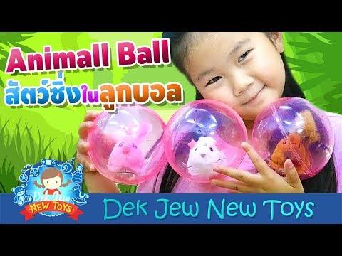 เด็กจิ๋ว | สัตว์ซิ่งในลูกบอล Animal Ball - วันที่ 27 Sep 2018