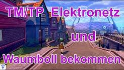 TM Elektronetz und Picuchilla gegen Waumboll tauschen | Pokemon Schwert und Schild