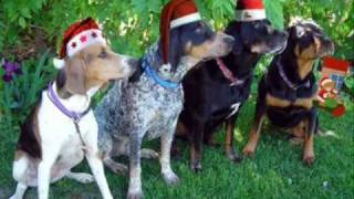 Barking Dogs - Jingle Bells