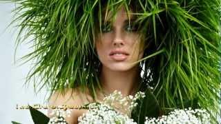 Video Les Fleurs Sauvages - Richard Clayderman download MP3, 3GP, MP4, WEBM, AVI, FLV November 2017