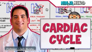 Cardiovascular | Cardiac Cycle