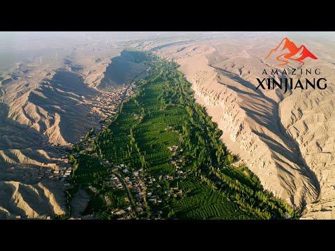 Live: Explore the sweetness of Grape Valley in Turpan, Xinjiang