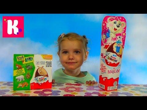 Видео: Animal Planet Животные Киндер сюрприз Новогодняя серия распаковка игрушек