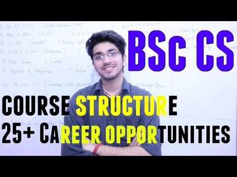 After bsc best career option