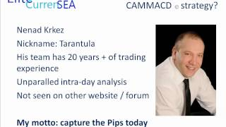 CAMMACD Forex Trading System Explained