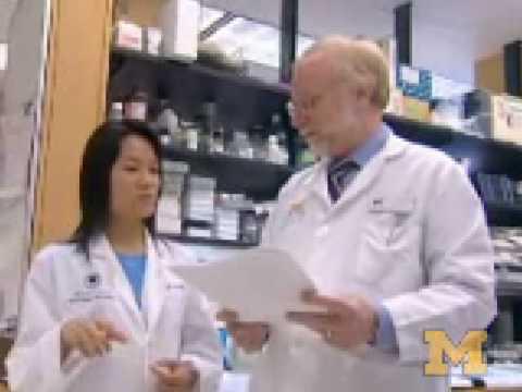 Targeting Breast Cancer Stem Cells