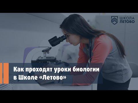 Урок биологии в школе видео