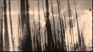 TheDarkTapes - Every Day In Further Decay