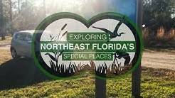 Exploring Northeast Florida's Julington Durbin Creek Preserve