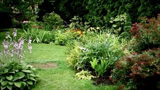 Jak odstranit mech z trávníku