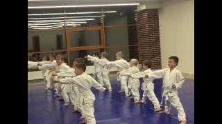 Дети каратэ дзюдо. Будущий президентский состав тренируется