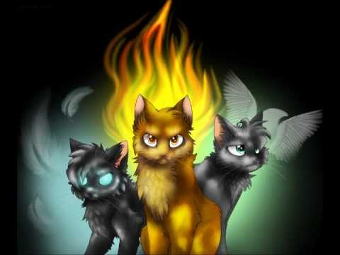Warrior cats – The Invisible Moth