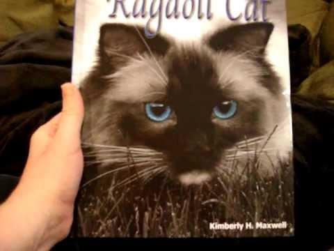 Ragdoll Cat Book - The Friendly Floppy Ragdoll Cat - ラグドール -- Floppycats