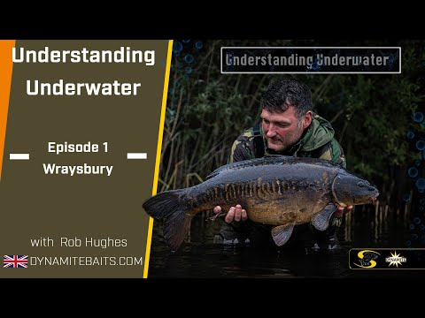 Carp Fishing: Understanding Underwater 1 - How Your Rigs And Baits Look Below The Surface