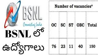 BSNL recruitment for 300 vacancies    bsnl recruitment for 300 management trainees