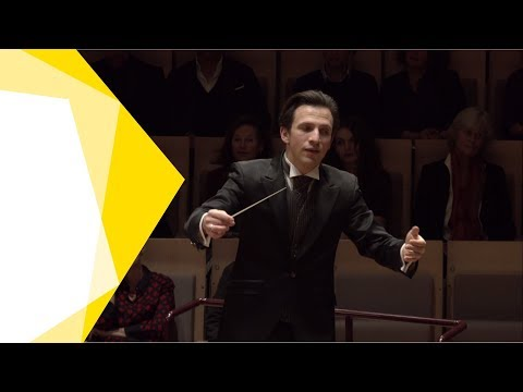 Wagner: Siegfried Idyll / Meister · Karajan-Academy Of The Berliner Philharmoniker