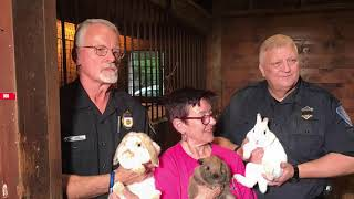 Animal advocates plead with owners to stop abandoning pets