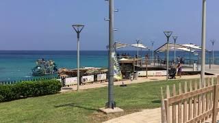 Cyprus Protaras Fig tree bay coast